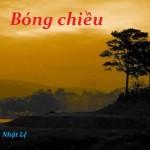 bong chieu 2