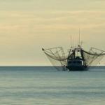 boat on missi - VNTB