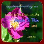 0 SN Tham