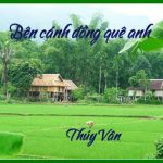 0 canh đong que anh