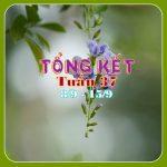 TUẦN 37 Còn rộn ràng ngày tết Trung Thu
