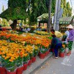 Hình ảnh chợ tết ở Cái Nhum
