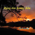 RÁNG TÍM HOÀNG HÔN ! của Bút Lương
