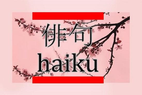 0-haiku-1
