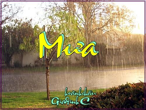 0 mưa