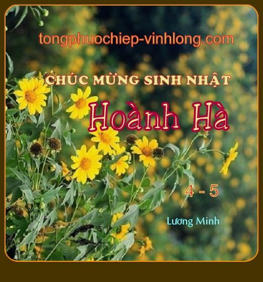 0 SN HHa