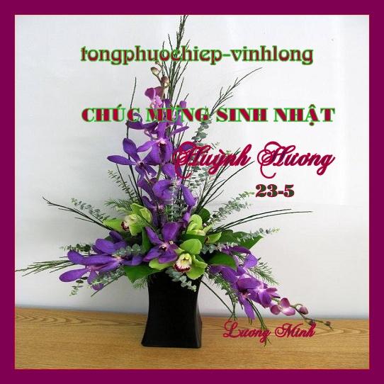 0 SN Huynh Huong