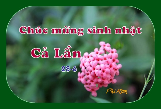 0 SN Lan 2