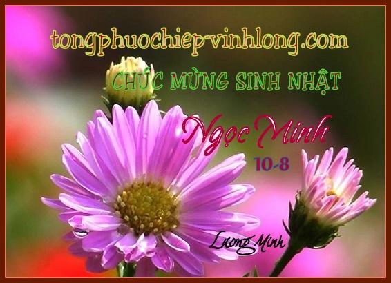 0 SN Ngoc Minh