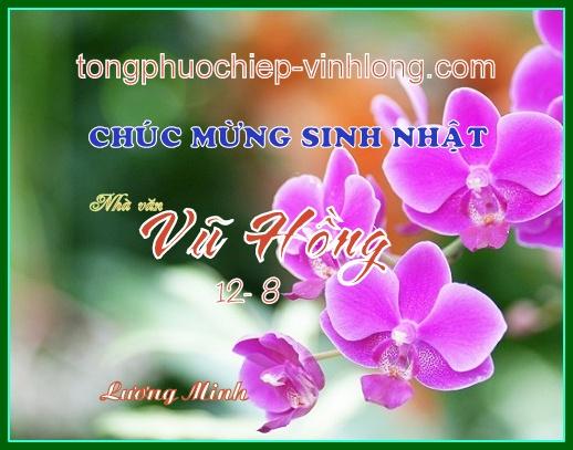 0 SN Vuhong