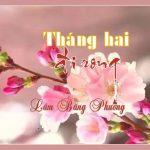 THÁNG HAI ĐI RONG của Lâm Băng Phương